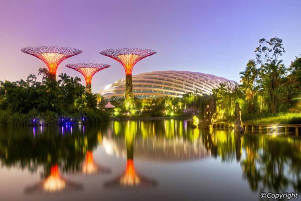 Ảnh: Singapore-guide.com
