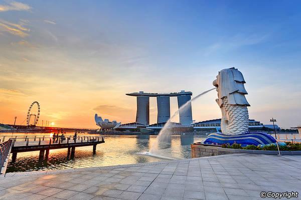 10 Điểm Check-in Không Thể Bỏ Qua Khi Du Lịch Singapore